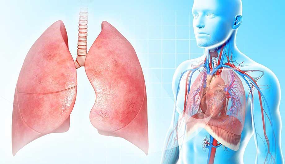 Признаки воспаления лёгких у взрослых без температуры