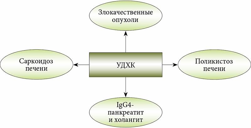 Урсодезоксихолевая кислота для чего назначают