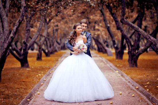 свадьба на что обратить внимание